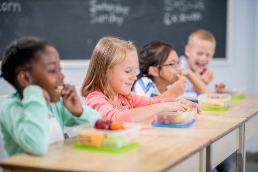 acompanhamento nutricional nas escolas